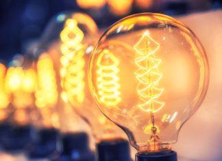 energia-elettrica-dalle-piante