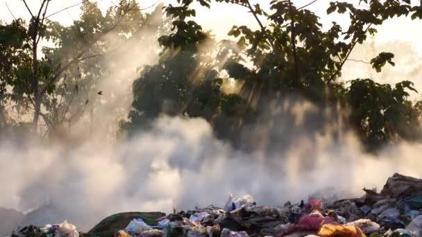 inquinamento- rifiuti