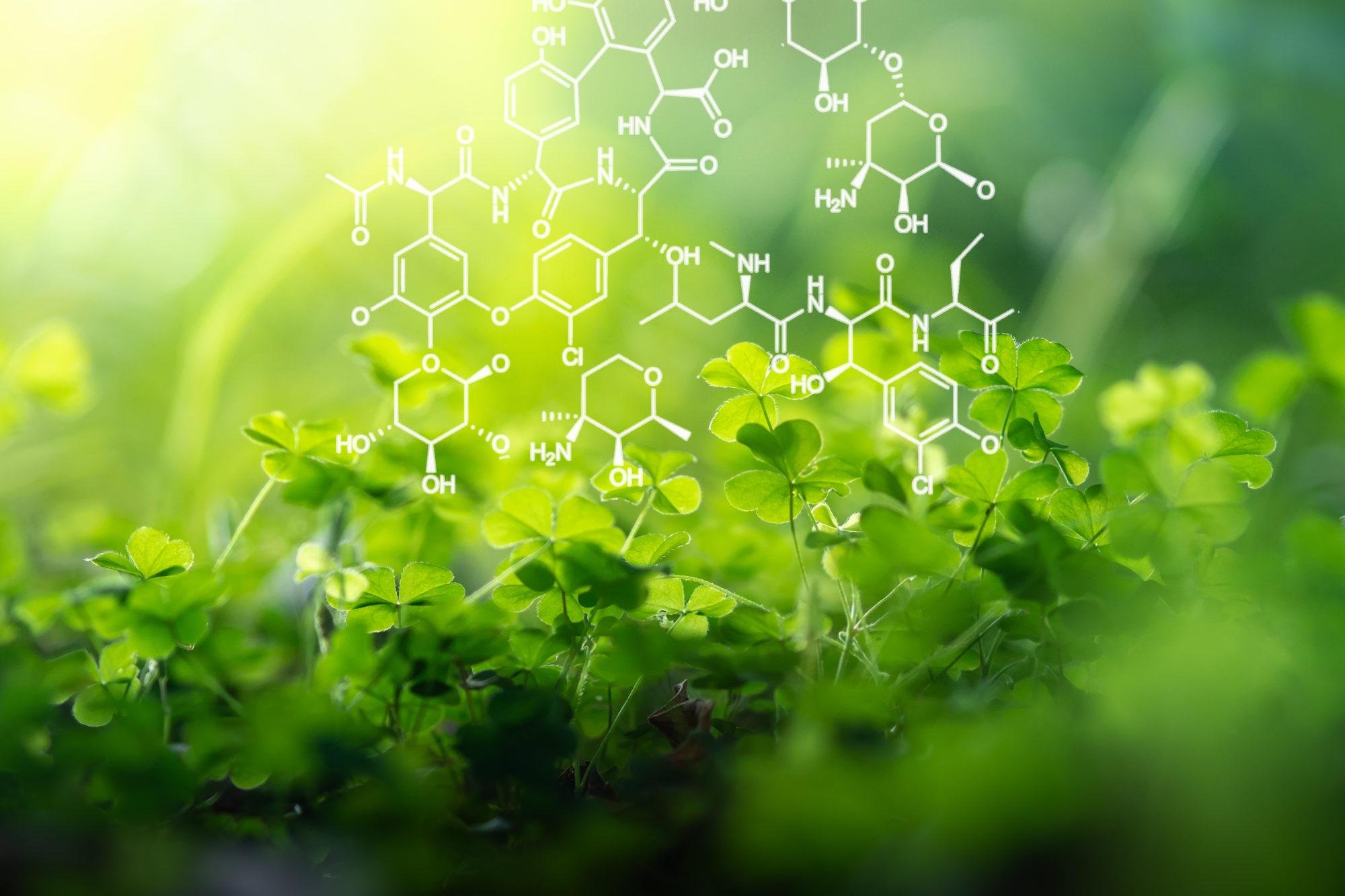 scienza e green